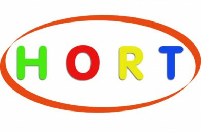 Das Logo vom Kidnerhort Graben.